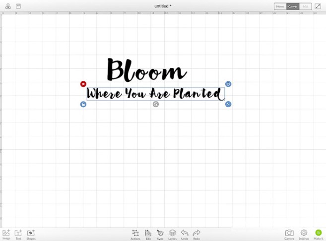 DIY Bloom Where You Are Planted Project