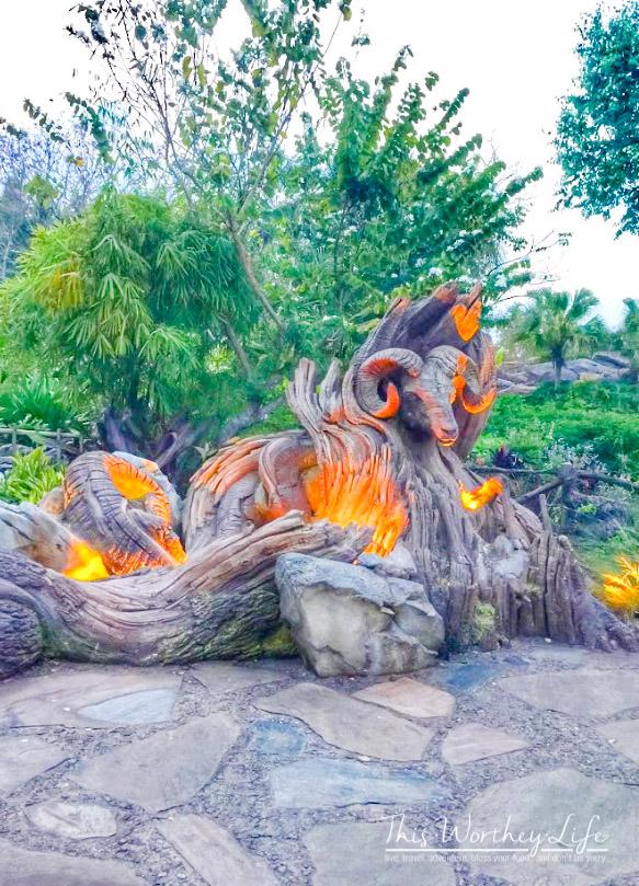 Disney's Animal Kingdom at night