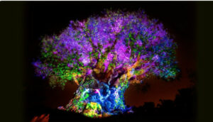 Disney's Animal Kingdom Tree of Life at night
