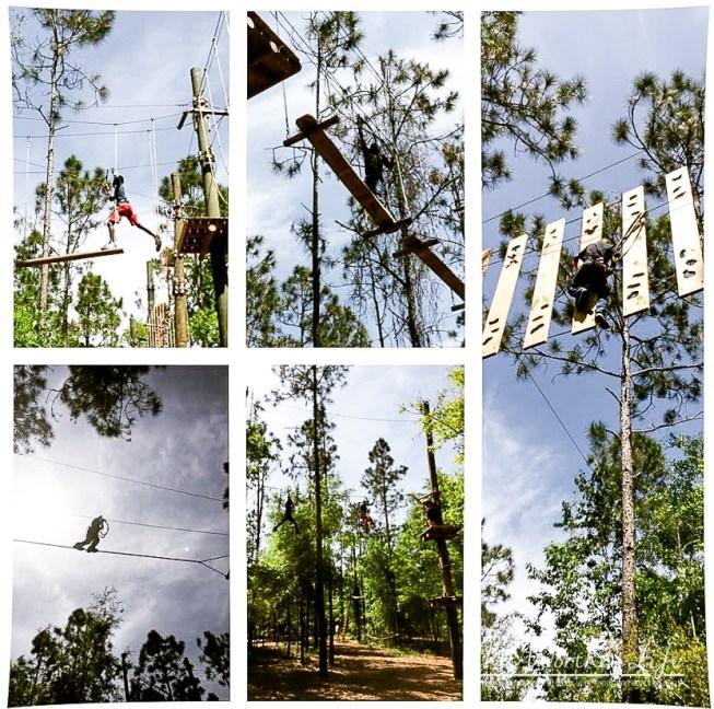 Orlando Tree Trek Adventure