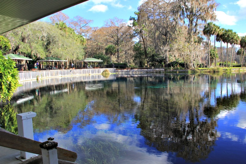 Florida is a great place for a family vacation. There are a ton of great family memories to be made in Ocala/Marion County. Check out our list of things to do for the family in Ocala/Marion county, Florida