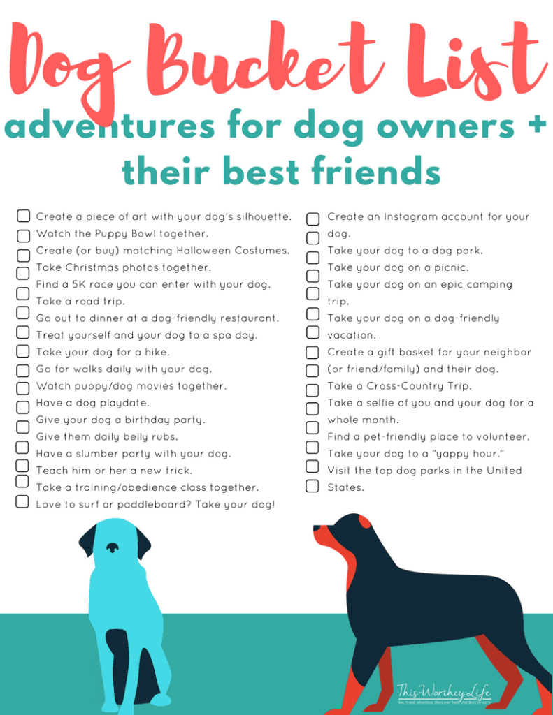 29 Bucket List Adventures For Dogs Their Owners This