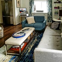 Small House Living Room Idea