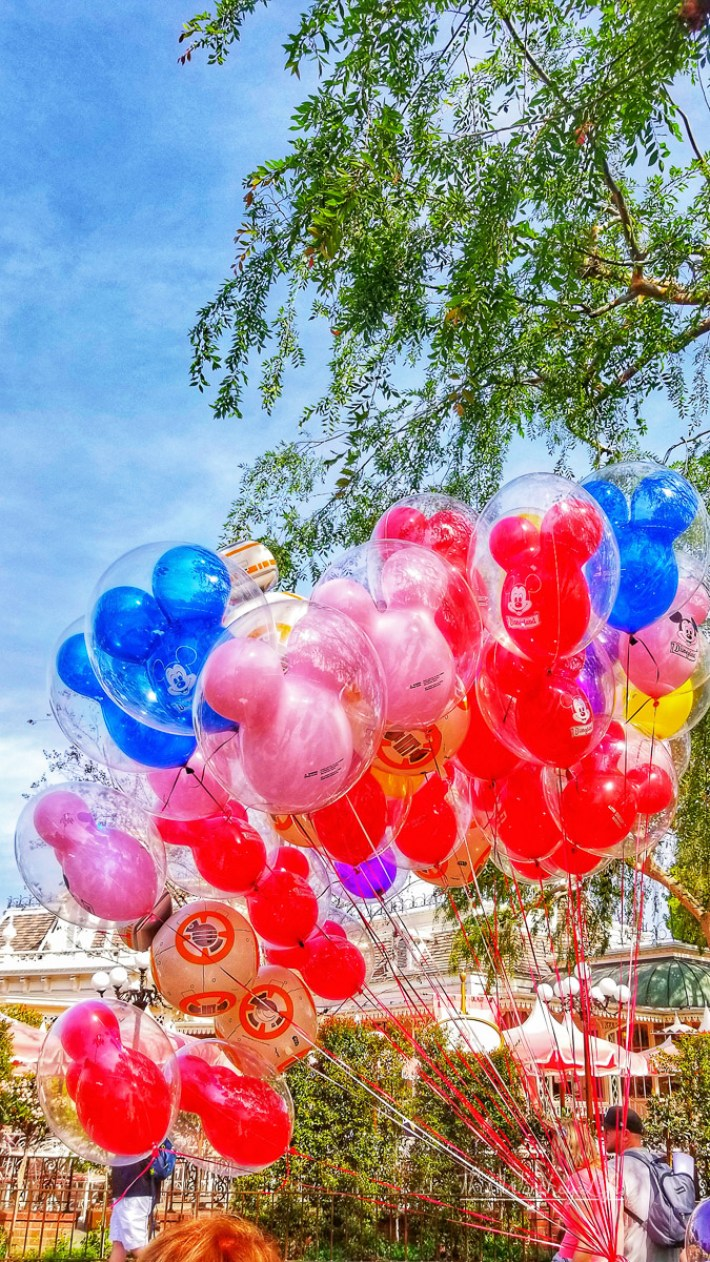 What to do at Disneyland and California Adventure Park in One Day
