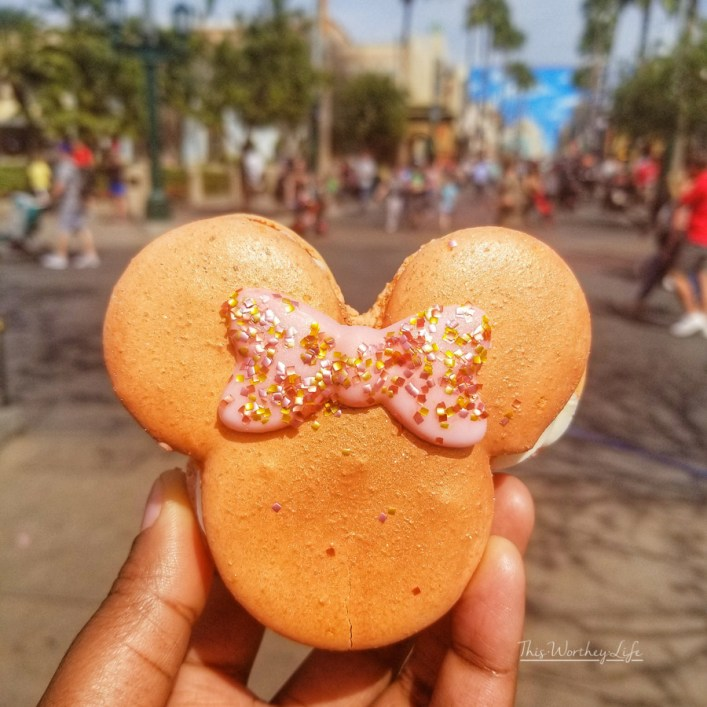 Rose Macaroons at Disney