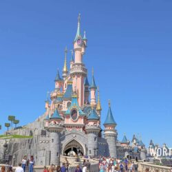 Planning a last minute trip to Disney World