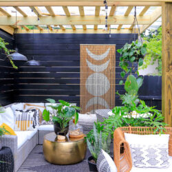 best plants for outdoor living