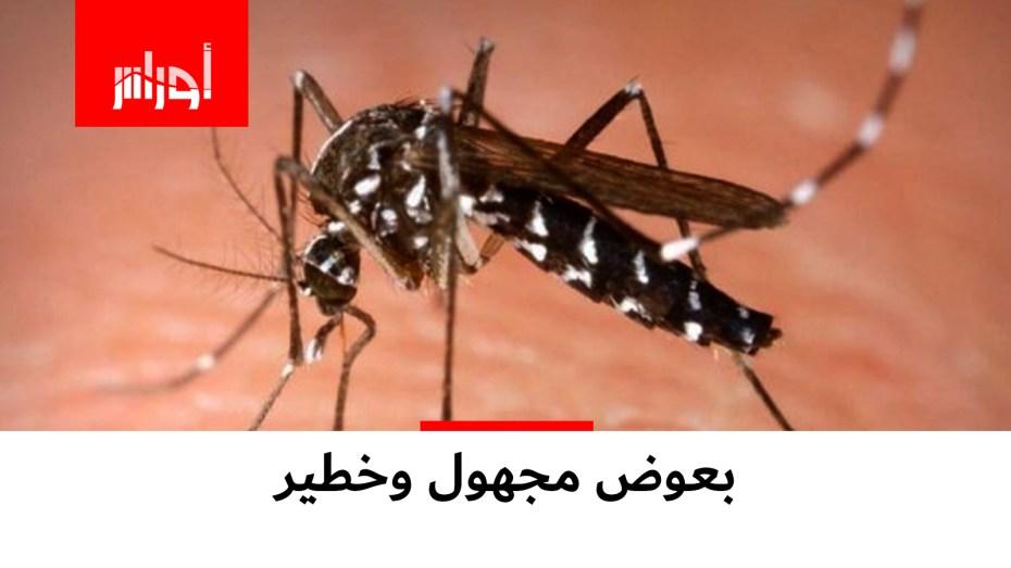 نوع مجهول من البعوض يحدث طوارئ ومنظمة حماية المستهلك تحذر