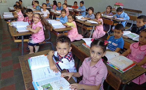 منظمة حماية المستهلك ترفض برمجة درس التكاثر للأطفال