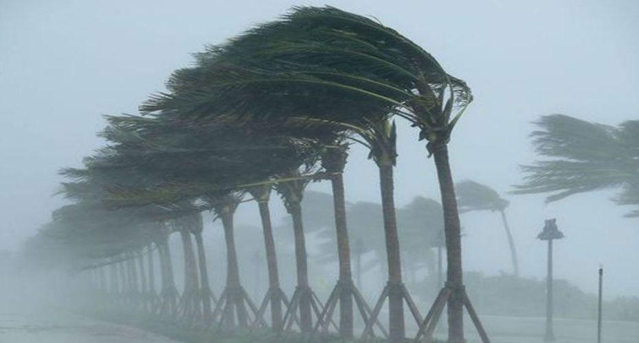 الديوان الوطني للأرصاد الجوية يُحذر