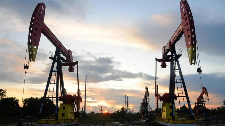 أسعار النفط تتراجع