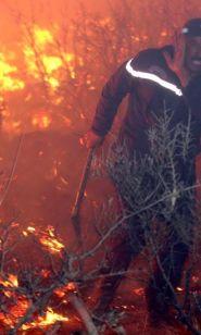 الجزائر تحترق