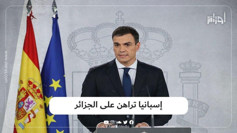 إسبانيا تراهن على الجزائر
