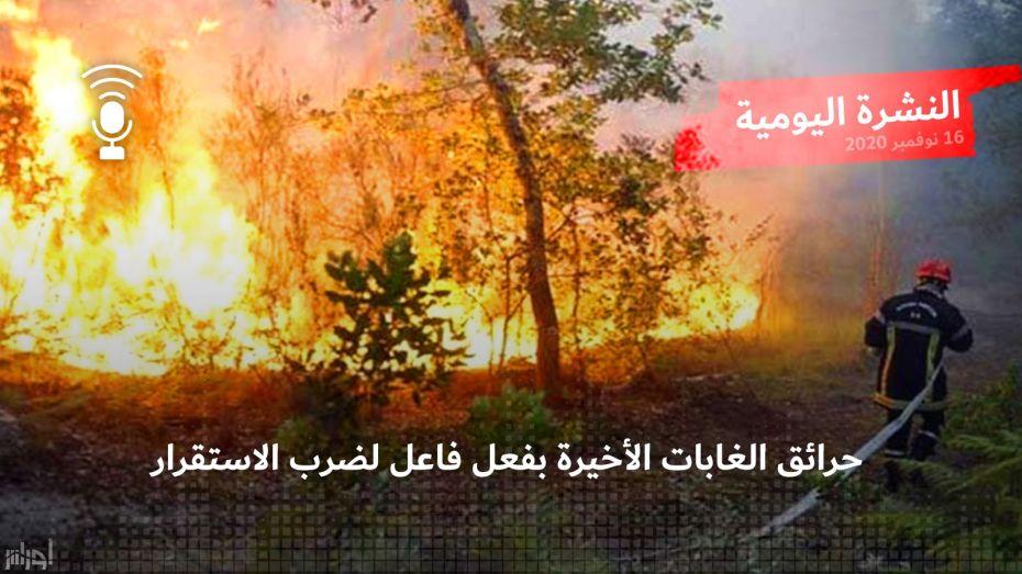 حرائق الغابات الأخيرة بفعل فاع لضرب الاستقرار