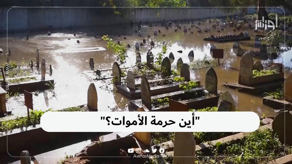 أين حرمة الأموات؟