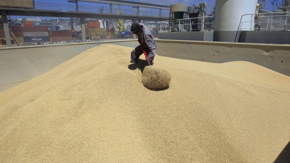 متعاملون أوربيون: غموض في صفقات استيراد القمح من طرف الجزائر