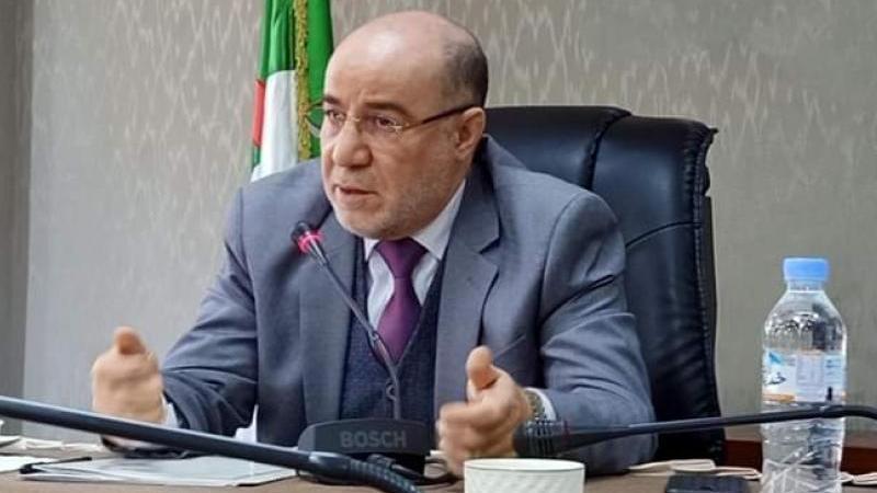 يوسف بلمهدي: هناك من أراد وأد الجزائر بالحراك