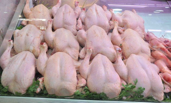 حملة لمقاطعة لحوم الدجاج ومنظمات حماية المستهلك تورط السلطات