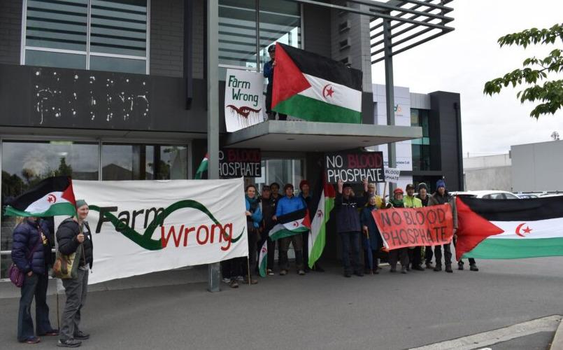 المحكمة العليا النيوزيلندية: لا سيادة أو سلطة للمغرب على الصحراء الغربية