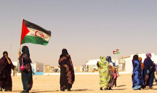 واشنطن تدعو إلى تعيين مبعوث أممي جديد للصحراء الغربية