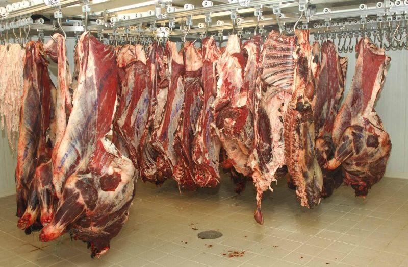وزارة الفلاحة تكشف كمية اللحوم المستوردة وموعد وصولها
