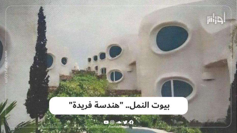 جزائري نقل تجربة #سويسرية إلى#الجزائر بهندسة فريدة تحمل الطابع العربي الإسلامي.. تعرف عليها