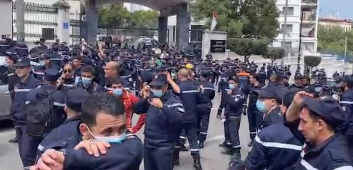 تتبعها متابعات قضائية.. مباشرة إجراءات توقيف 230 عونا من الحماية المدينة