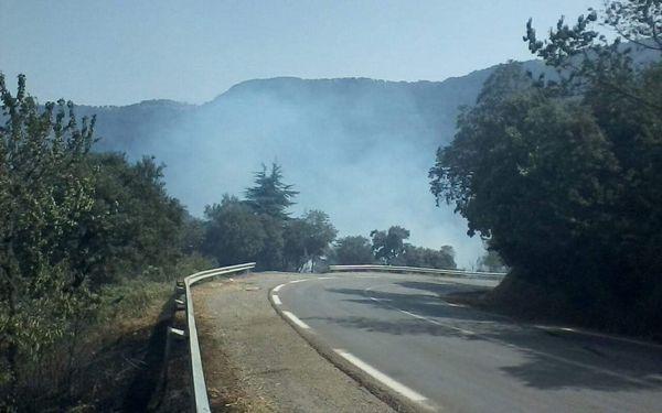 تواصل عملية إخماد حريق مرتفعات الشريعة بالبليدة