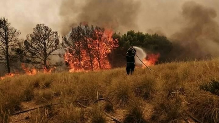 بالصور.. الحرائق تهدد سكان المناطق الحدودية بتبسة