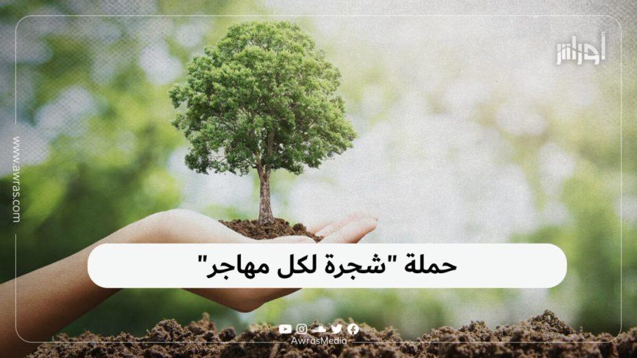 """حملة """"شجرة لكل مهاجر"""""""