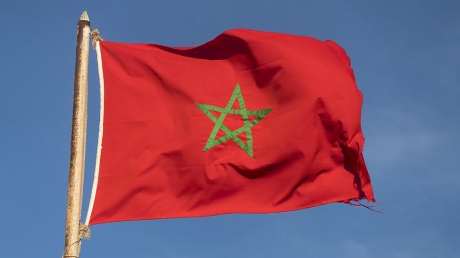 """المغرب.. سوق نشطة لإنتاج المخدرات """"القتب الهندي"""" وتهريبها إلى أوروربا ودول أخرى"""