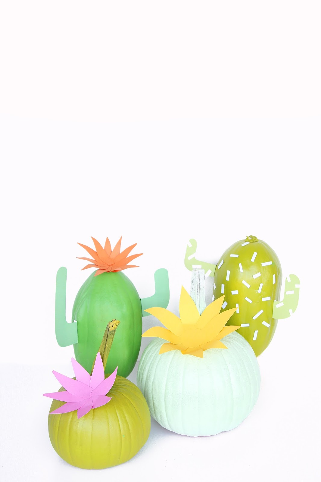 Diy Cactus Pumpkins