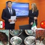 abre FEDECOOP oficina en shanghái, embajada de mexico en china