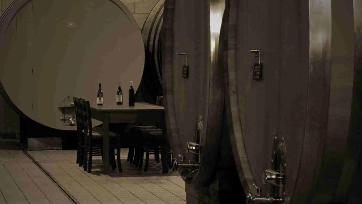 Vino rosso Naumachos – azienda Carminucci