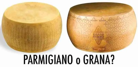 differenze-parmigiano-reggiano-grana-padano