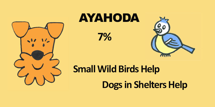 Ayahoda Small Wild Birds and Dogs in Shelters Help