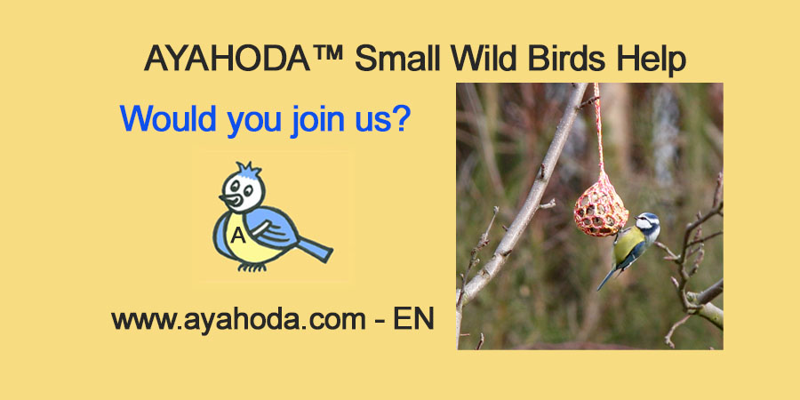 AYAHODA™ Small Wild Birds Help Feeder