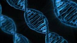 DNA, ancestors and ayahuasca