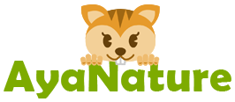 AyaNature