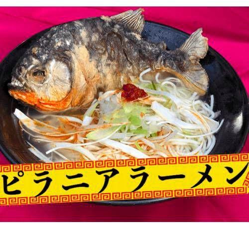 【海外】「これがラーメンの最終形態というわけか・・」日本でピラニアが入ったラーメンが期間限定で販売されるらしいぞ!