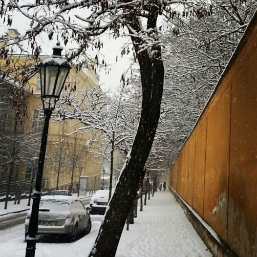 Vinicna street