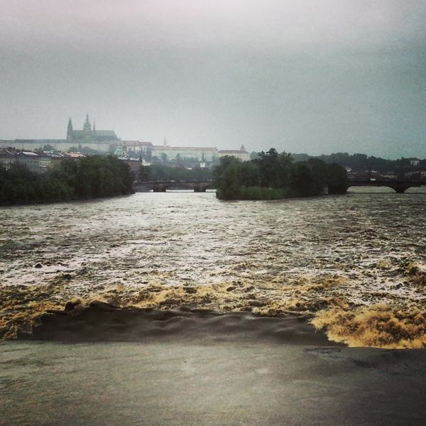 RadkaZimovaK_wild_Vltava_river_Prague