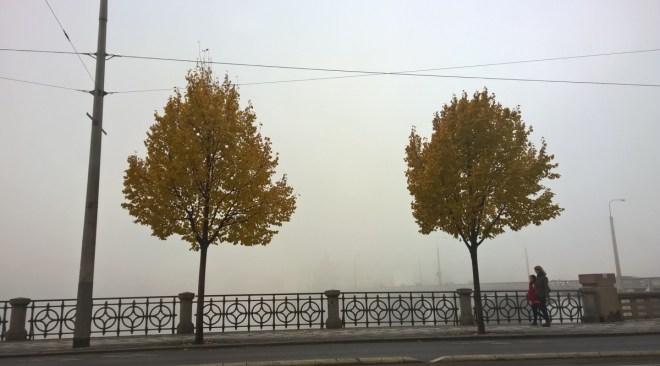 Prague river bank on misty morning