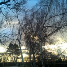 Petrin-Prague-winter-walk