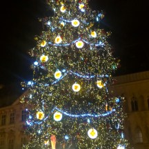 Prague-atnight-OldTownSquare_XmasTree
