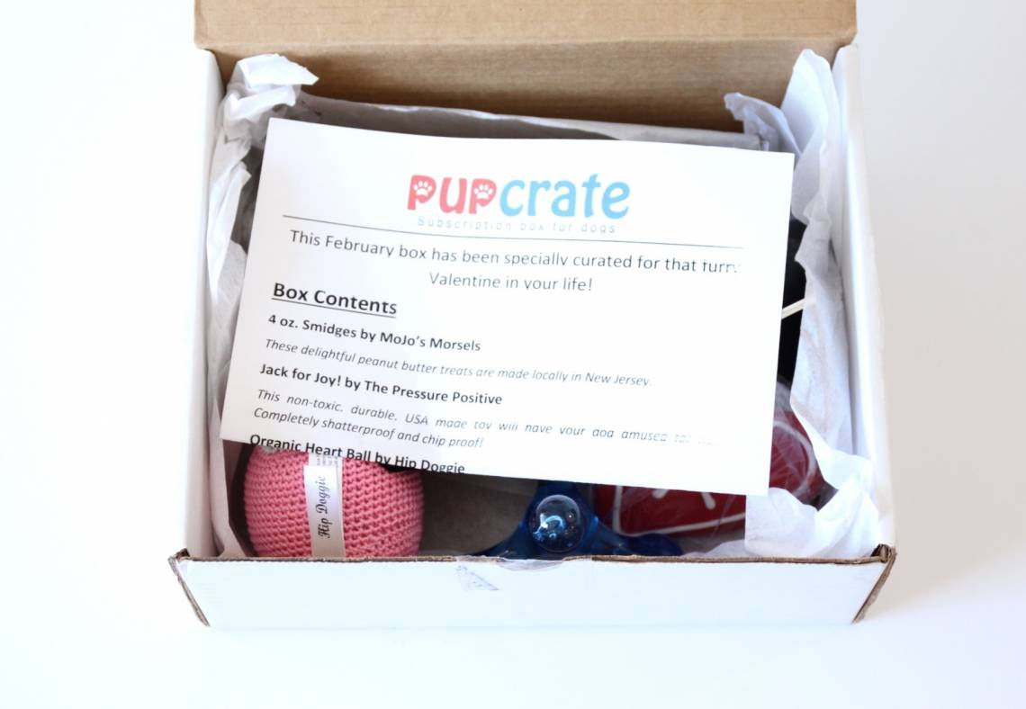 PupCrate February 2016 1