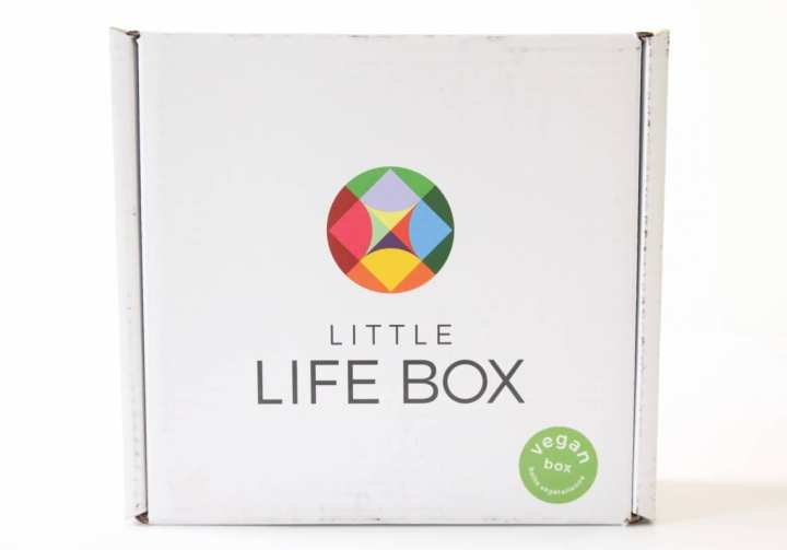 Little Life Box Review June 2016 1