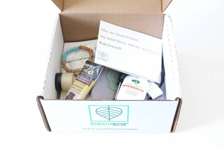 BuddhiBox Review June 2016 2