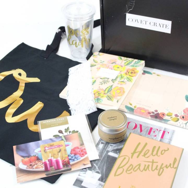 Covet Crate Review July 2016 6