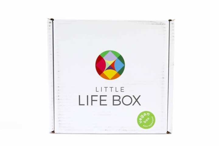 Little Life Box Review July 2016 1